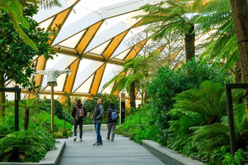 Crossrail Garden